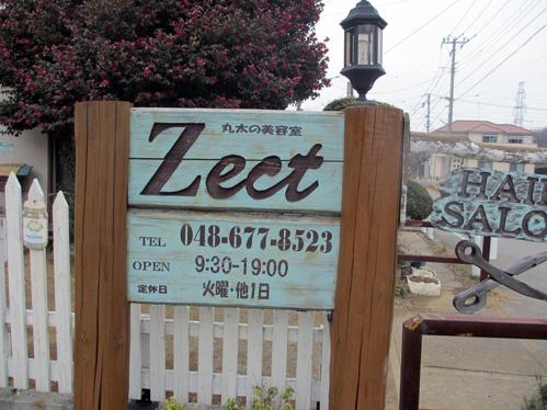 Zect2